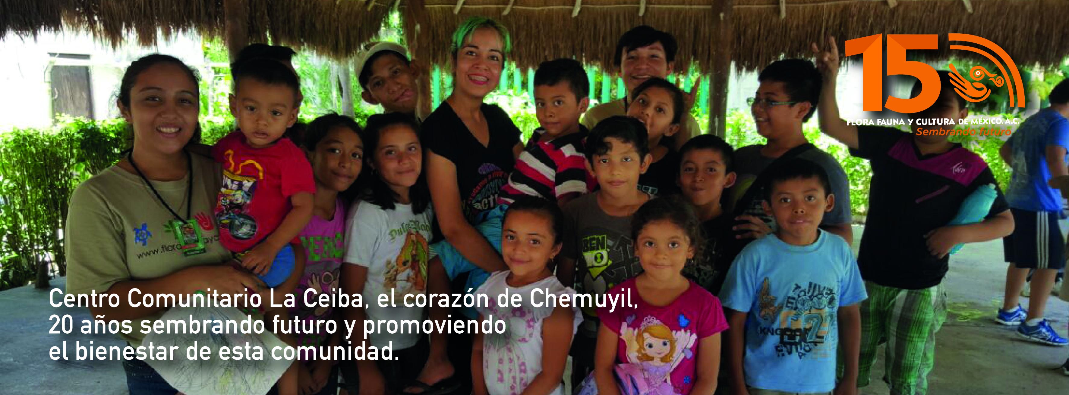 Únete al latido de la Ceiba, el corazón de Chemuyil