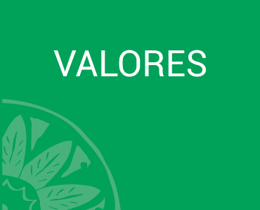 Valores - Flora, Fauna y Cultura de México AC.