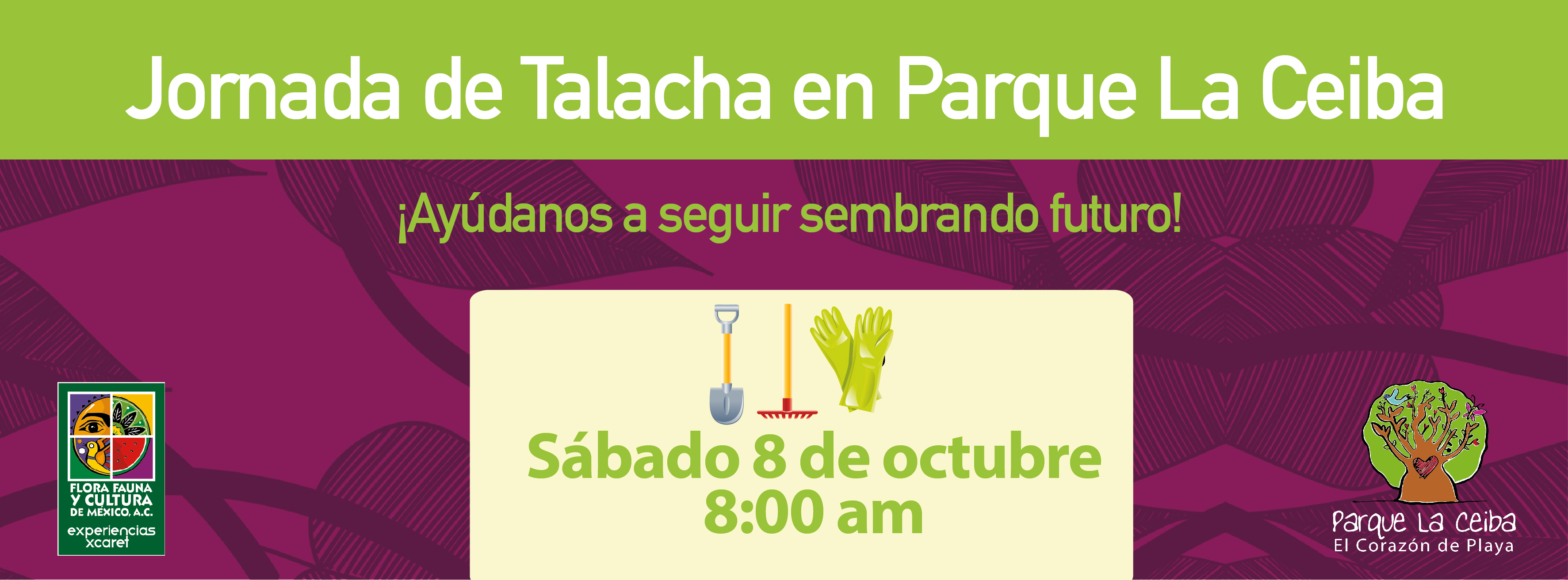 Jornada de Talacha