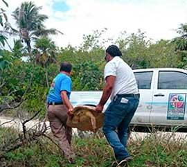 Sumando esfuerzos por la conservación