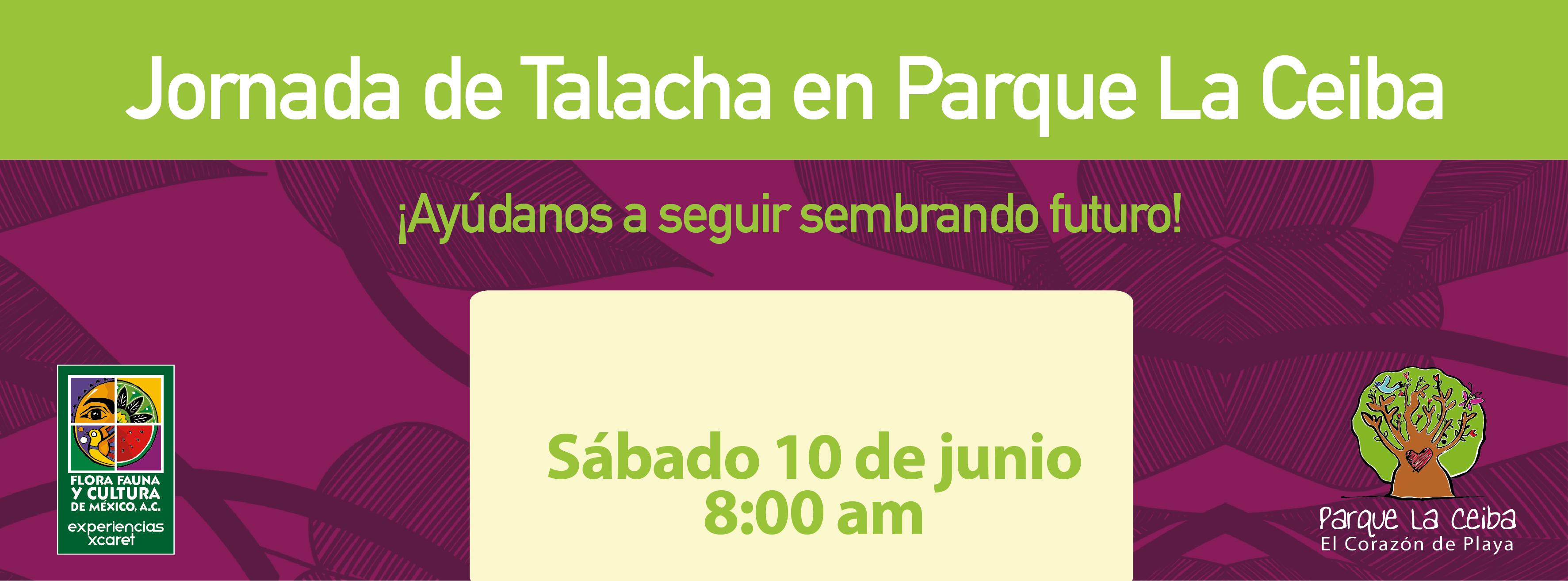 Jornada de Talacha en Parque La Ceiba