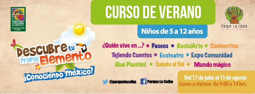 Curso de Verano Parque La Ceiba